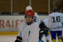 eishockey 2012