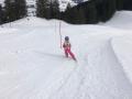 Skirennen 2019 11